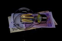 Bombilla en el dinero Fotografía de archivo