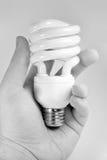 Bombilla fluorescente compacta Fotografía de archivo