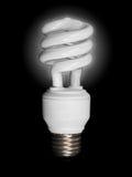 Bombilla fluorescente compacta Imagenes de archivo