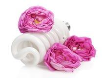 Bombilla fluorescente entre rosas Fotografía de archivo libre de regalías