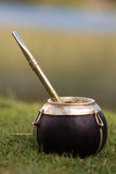Bombilla and Mate. A cup of yerba mate, a traditional drink in South American culture, sits in the grass stock photos