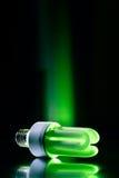 Bombilla verde Foto de archivo libre de regalías