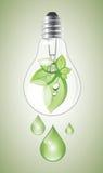 Bombilla verde Fotografía de archivo libre de regalías