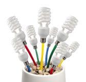 Bombillas con los cables coloreados que crecen en un crisol Foto de archivo