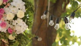Bombillas guirnalda y composición de las flores Lámparas eléctricas que cuelgan en árbol como decoración para el cierre del día d almacen de metraje de vídeo