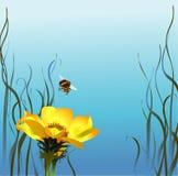 Bombo & fiore illustrazione di stock