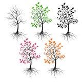 Bomen. Stock Foto