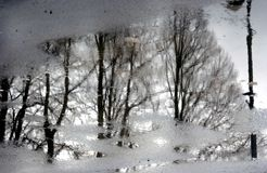 Bomen Abstracte Foto Royalty-vrije Stock Foto's