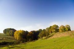 Bomen bij de herfst Stock Afbeelding