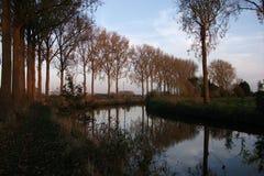 Bomen bij zonsondergang in de herfst in Scheldemeersen in Spiere, West-Vlaanderen, België royalty-vrije stock afbeeldingen