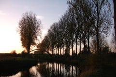 Bomen bij zonsondergang in de herfst in Scheldemeersen in Spiere, West-Vlaanderen, België stock foto's