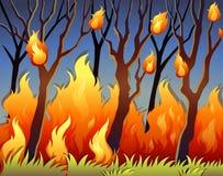 Bomen in bos op brand stock illustratie