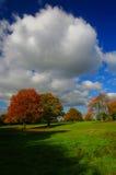Bomen in de herfstkleuren en bewolkte blauwe hemel royalty-vrije stock fotografie