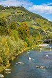 Bomen in de herfstkleuren langs rivier Isarco Eisack, Chiusa, Italië royalty-vrije stock foto
