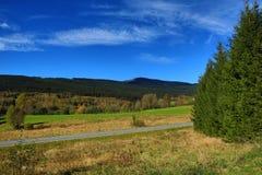 Bomen, de herfstlandschap in de buurt van Zelezna Ruda, Tsjechische republiek Stock Afbeelding