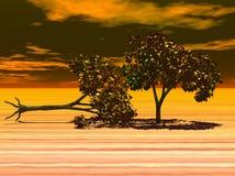 Bomen in de woestijn Stock Foto's