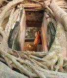 bomen die de kerk omringen Royalty-vrije Stock Afbeelding