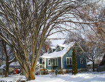 Bomen die huis frame Stock Foto
