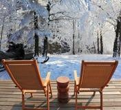 Bomen die met sneeuw worden behandeld Royalty-vrije Stock Fotografie