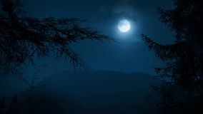 Bomen die Nacht Forest With Moon ontwerpen stock footage