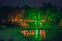 Bomen door een groen licht tijdens Winterfair Engbergen 2016 worden verlicht die Stock Afbeelding