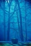 Bomen door mist.   stock foto