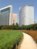 Bomen in een groen park in Tokyo Royalty-vrije Stock Foto