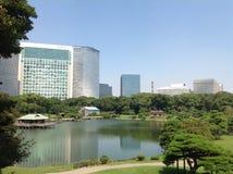 Bomen in een groen park in Tokyo Royalty-vrije Stock Fotografie