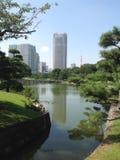 Bomen in een groen park in Tokyo Royalty-vrije Stock Afbeeldingen