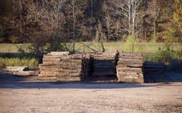 Bomen in een Timmerhoutwerf royalty-vrije stock afbeeldingen