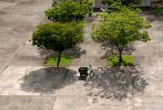 Bomen en arbeider royalty-vrije stock fotografie