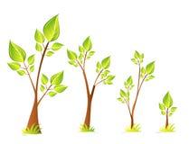 Bomen en bladeren vectorreeks Royalty-vrije Stock Fotografie