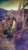 Bomen en brug Stock Afbeeldingen