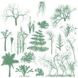 Bomen en grassilhouetten Royalty-vrije Stock Afbeelding