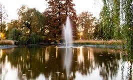 Bomen en het meer Royalty-vrije Stock Afbeeldingen