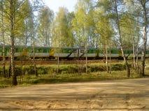 Bomen en het overgaan van trein Royalty-vrije Stock Afbeeldingen
