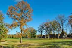 Bomen en landbouwbedrijf in Nederlands landschap Royalty-vrije Stock Foto
