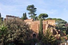 Bomen en ruïnes in Rome, Italië Royalty-vrije Stock Afbeeldingen
