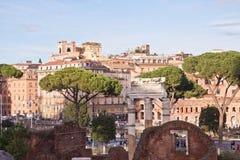 Bomen en ruïnes in Rome, Italië Stock Foto's