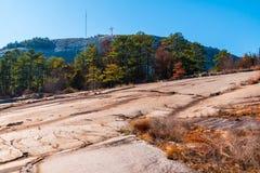 Bomen en steengrond in het Park van de Steenberg, Georgië, de V.S. Stock Afbeelding