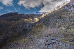 bomen en verlichting op de bergmening Royalty-vrije Stock Foto's