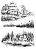 Bomen en waterbezinning, vectorillustratiereeks Landschap met bos, hand getrokken schets Royalty-vrije Stock Afbeelding