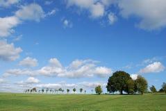 Bomen in Hampshire stock afbeeldingen