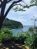Bomen in Hawaï met wolken Royalty-vrije Stock Fotografie