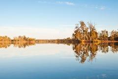 Bomen in het meer royalty-vrije stock afbeelding