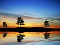 Bomen in het meer worden weerspiegeld dat royalty-vrije stock afbeelding