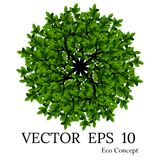 Bomen hoogste mening voor landschaps vectorillustratie stock fotografie