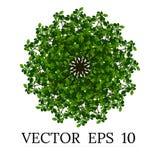 Bomen hoogste mening voor landschaps vectorillustratie royalty-vrije stock fotografie