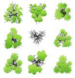 Bomen hoogste mening voor landschaps vectorillustratie royalty-vrije stock afbeeldingen