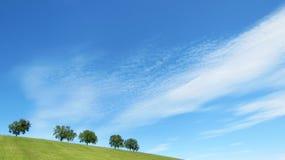 Bomen met blauwe hemel en wolken (11) Stock Foto's